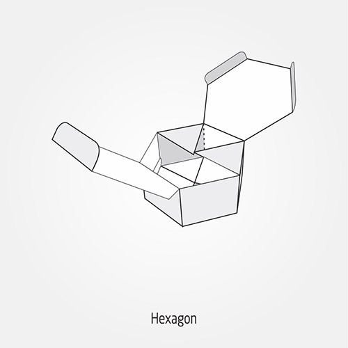 Hexagon Box Style